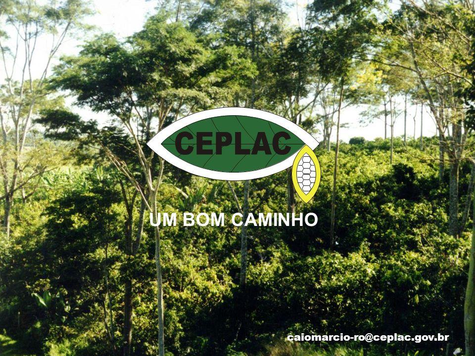 caiomarcio-ro@ceplac.gov.br UM BOM CAMINHO
