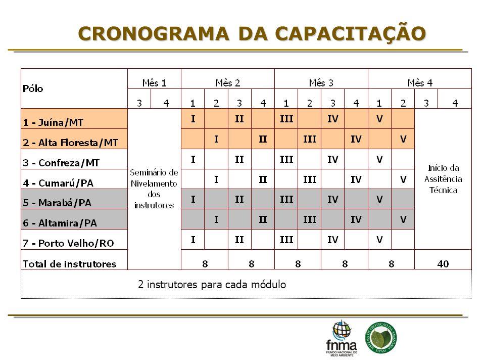 CRONOGRAMA DA CAPACITAÇÃO 2 instrutores para cada módulo
