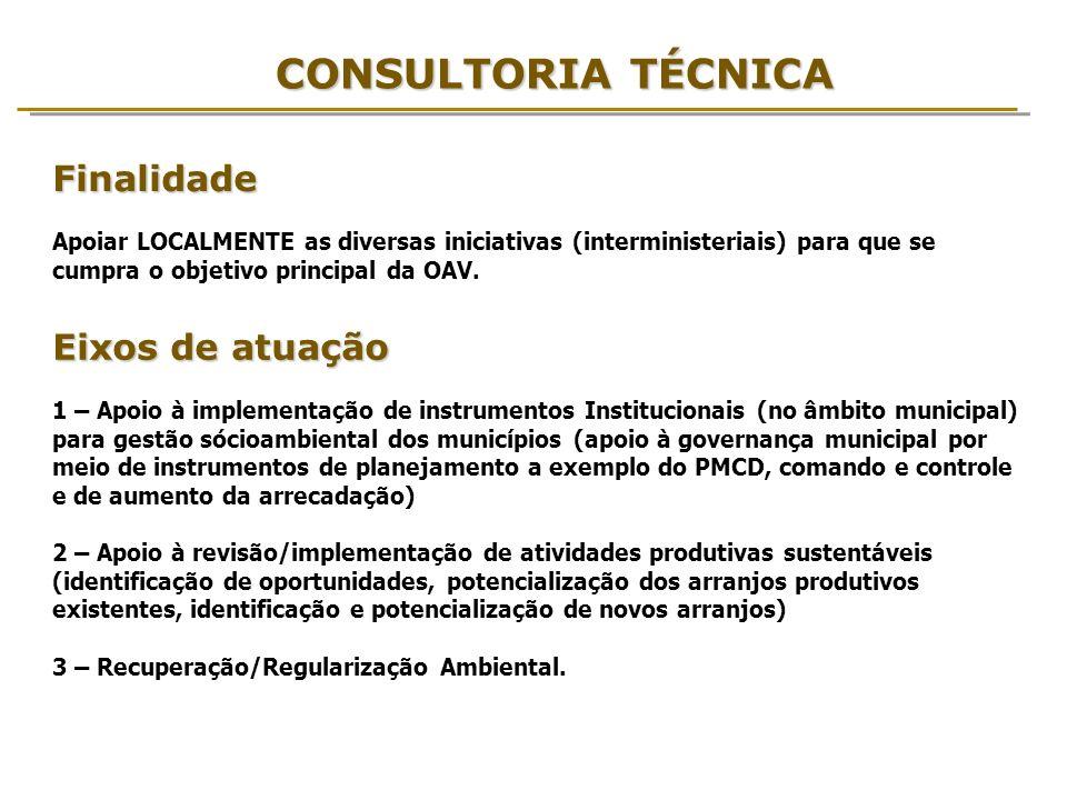 CONSULTORIA TÉCNICA Eixos de atuação 1 – Apoio à implementação de instrumentos Institucionais (no âmbito municipal) para gestão sócioambiental dos mun