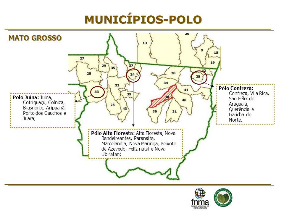 MUNICÍPIOS-POLO Pólo Confreza: Confreza, Vila Rica, São Félix do Araguaia, Querência e Gaúcha do Norte. MATO GROSSO Pólo Alta Floresta: Alta Floresta,
