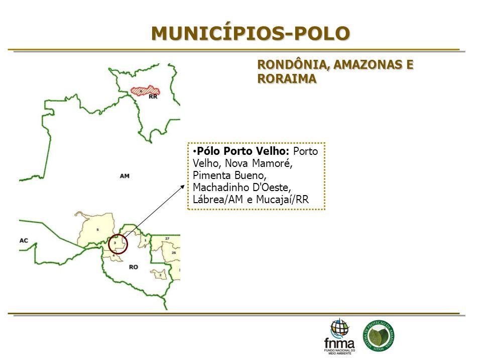 MUNICÍPIOS-POLO Pólo Porto Velho: Porto Velho, Nova Mamoré, Pimenta Bueno, Machadinho D'Oeste, Lábrea/AM e Mucajaí/RR RONDÔNIA, AMAZONAS E RORAIMA