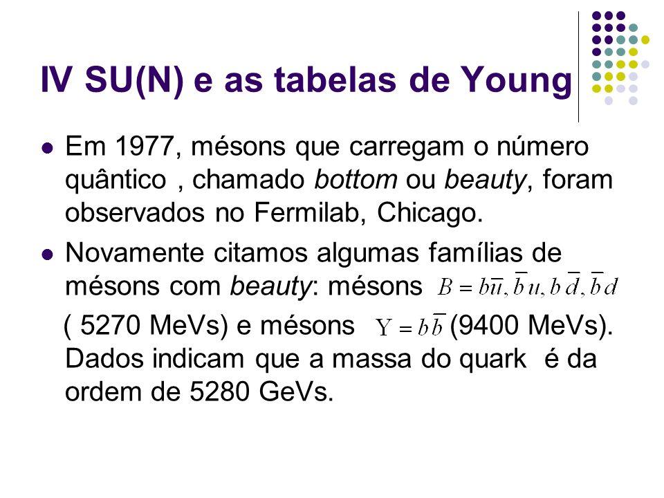 IV SU(N) e as tabelas de Young Em 1977, mésons que carregam o número quântico, chamado bottom ou beauty, foram observados no Fermilab, Chicago. Novame
