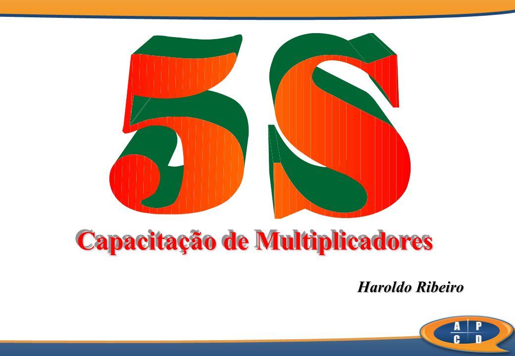 Haroldo Ribeiro Haroldo Ribeiro Capacitação de Multiplicadores