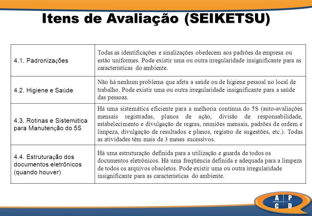 Itens de Avaliação (SEIKETSU) 4.1.