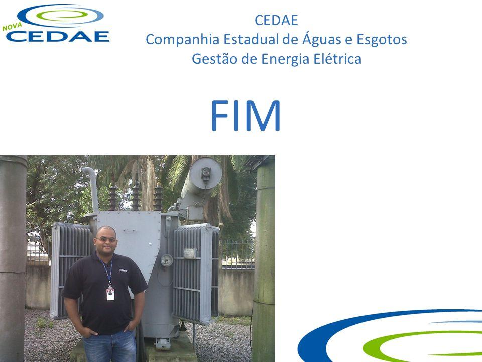 CEDAE Companhia Estadual de Águas e Esgotos Gestão de Energia Elétrica FIM