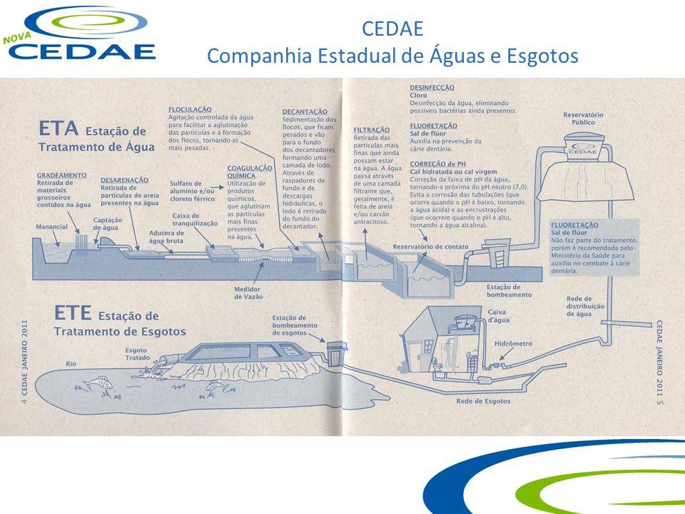 CEDAE Companhia Estadual de Águas e Esgotos Principais Unidades: ÁGUA – ETA – GUANDU Potência Instalada: 106MW Demanda Contratada: 41 MW AGUA – ELEV – LAMEIRAO Potência Instalada: 50 MW Demanda Contratada: 31 MW ÁGUA – CAPTAÇÃO – IMUNANA Potência Instalada: 7,45 MW Demanda Contratada: 6,3 MW ÁGUA – ELEV - IMUNANA Potência Instalada: 9,9 MW Demanda Contratada: 6,6 MW