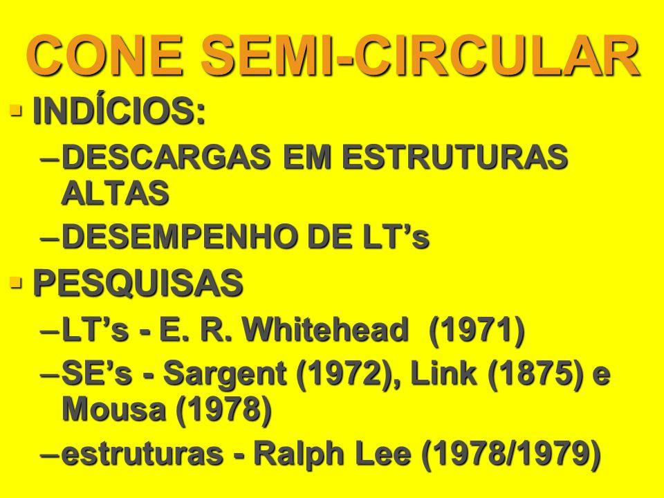 CONE SEMI-CIRCULAR INDÍCIOS: INDÍCIOS: –DESCARGAS EM ESTRUTURAS ALTAS –DESEMPENHO DE LTs PESQUISAS PESQUISAS –LTs - E. R. Whitehead (1971) –SEs - Sarg