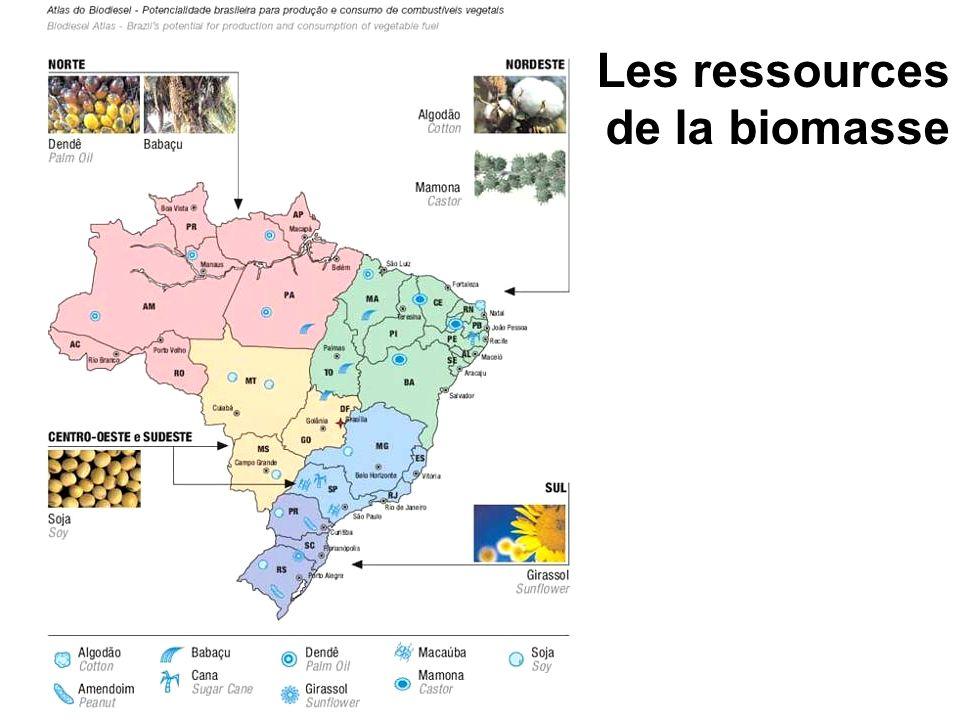Les ressources de la biomasse