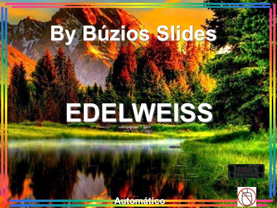 By Búzios Slides EDELWEISS Automático