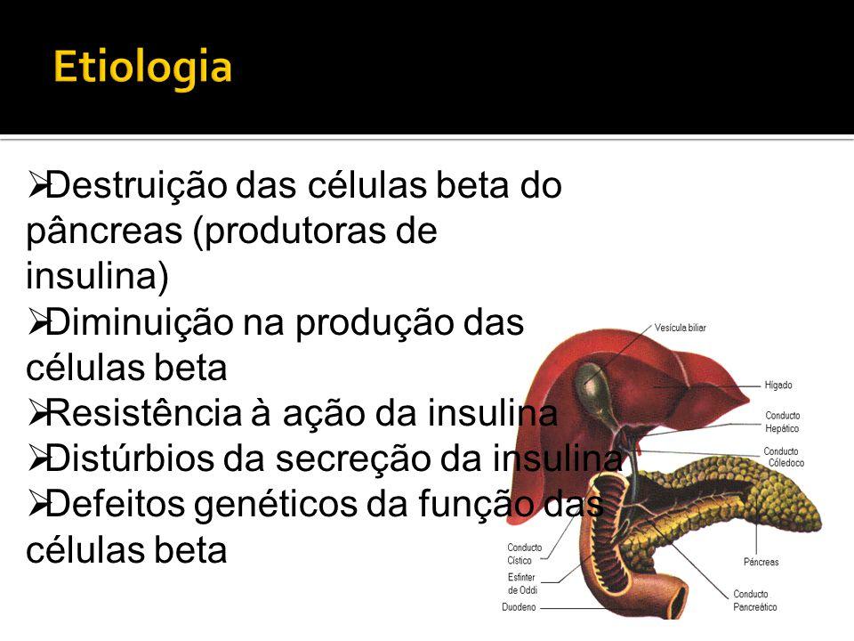  Destruição das células beta do pâncreas (produtoras de insulina)  Diminuição na produção das células beta  Resistência à ação da insulina  Distúr