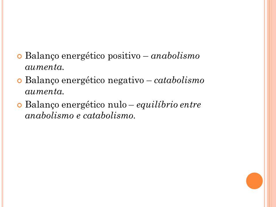 Balanço energético positivo – anabolismo aumenta. Balanço energético negativo – catabolismo aumenta. Balanço energético nulo – equilíbrio entre anabol