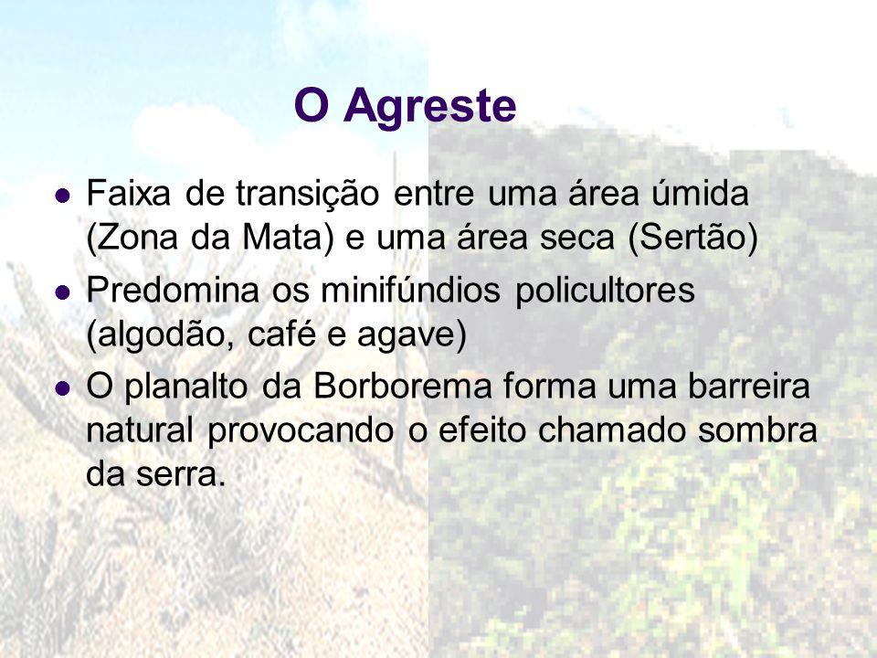 30/7/201510 Subdivisão da Zona da Mata Zona da Mata açucareira: estende-se do RN ao norte da BA, predomínio dos latifúndios monocultores de açúcar.
