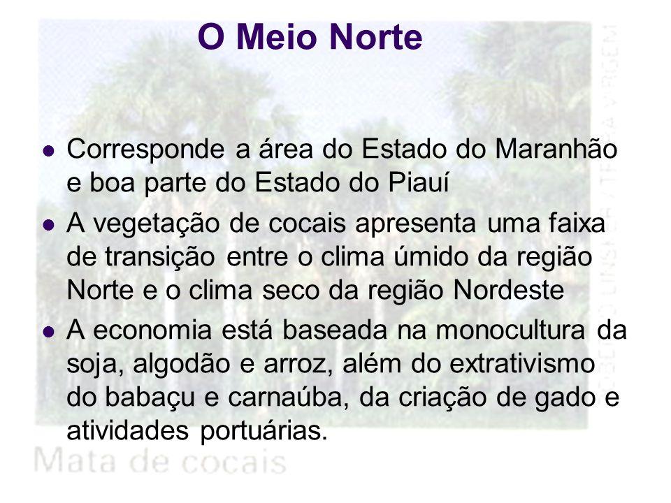 30/7/201515 O Sertão Nordestino e o polígono da seca Rio Jaguaribe Rio São Francisco