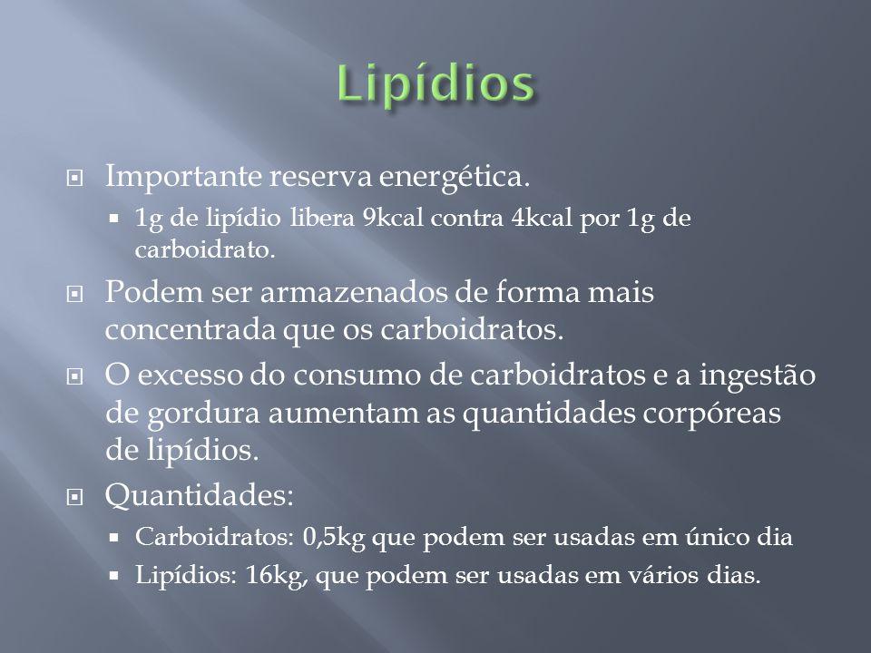  Importante reserva energética.  1g de lipídio libera 9kcal contra 4kcal por 1g de carboidrato.  Podem ser armazenados de forma mais concentrada qu