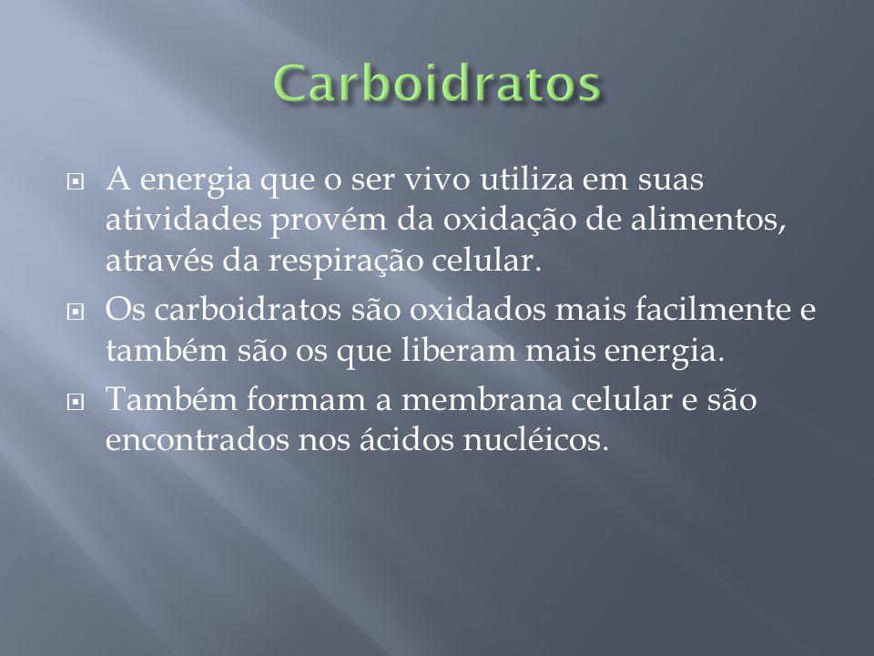  A energia que o ser vivo utiliza em suas atividades provém da oxidação de alimentos, através da respiração celular.  Os carboidratos são oxidados m