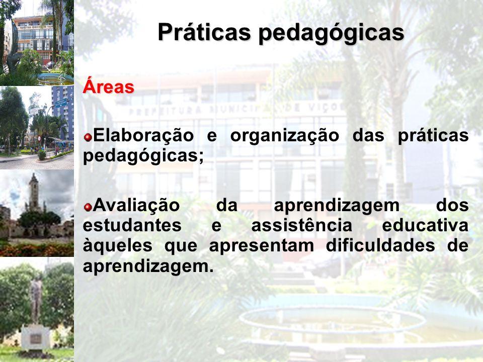 Práticas pedagógicas Áreas Elaboração e organização das práticas pedagógicas; Avaliação da aprendizagem dos estudantes e assistência educativa àqueles