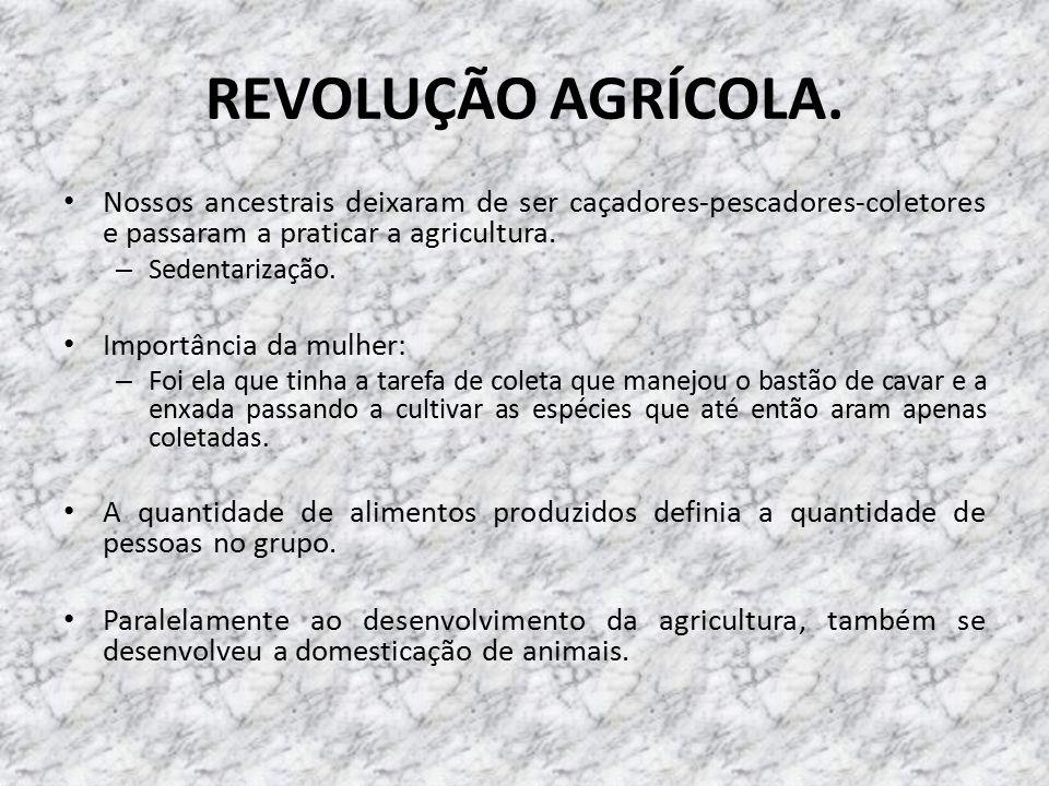 REVOLUÇÃO AGRÍCOLA.