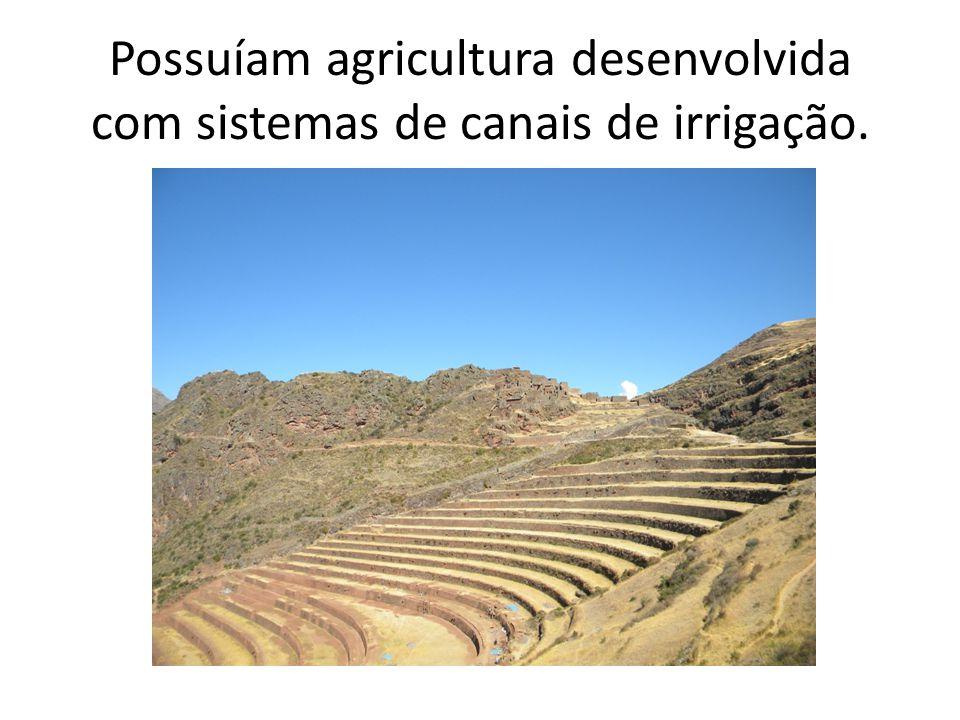 Possuíam agricultura desenvolvida com sistemas de canais de irrigação.