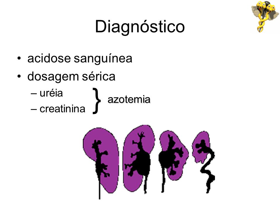 Diagnóstico acidose sanguínea dosagem sérica –uréia –creatinina } azotemia