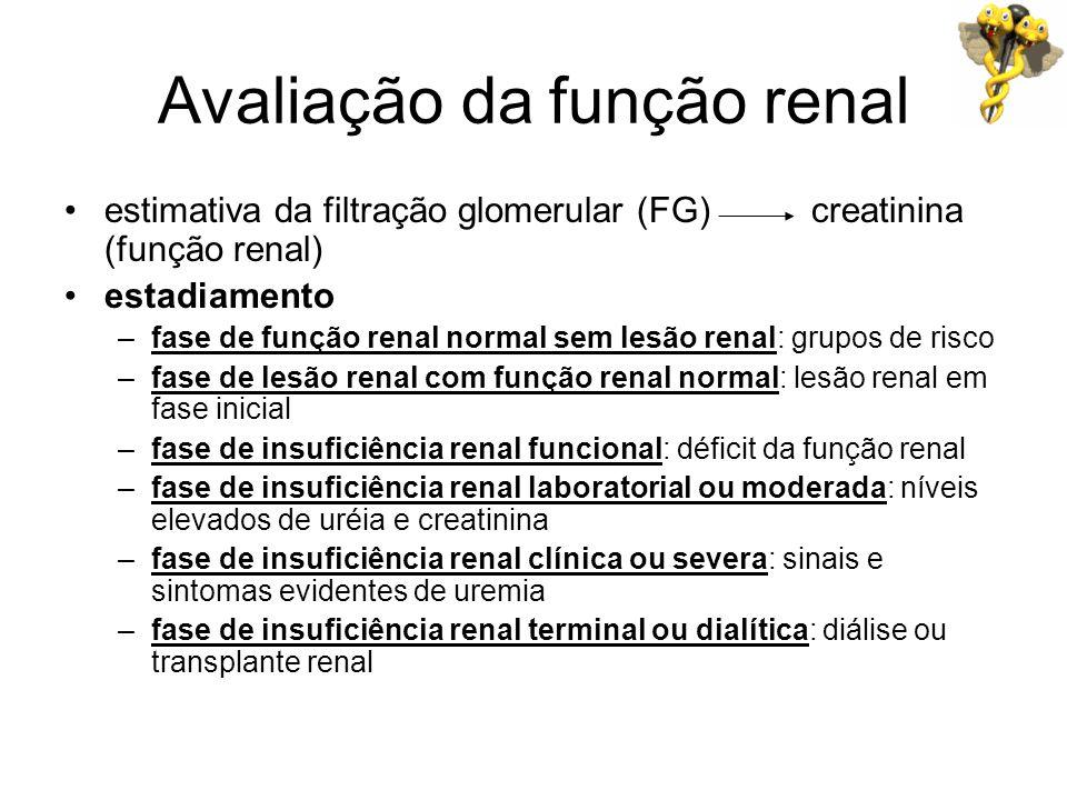 Avaliação da função renal estimativa da filtração glomerular (FG) creatinina (função renal) estadiamento –fase de função renal normal sem lesão renal: