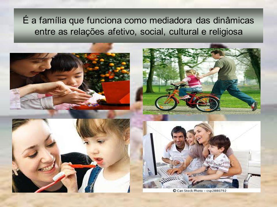 A família é vista como um sistema social responsável pela transmissão de valores