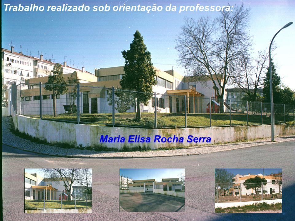 Trabalho realizado sob orientação da professora: Maria Elisa Rocha Serra