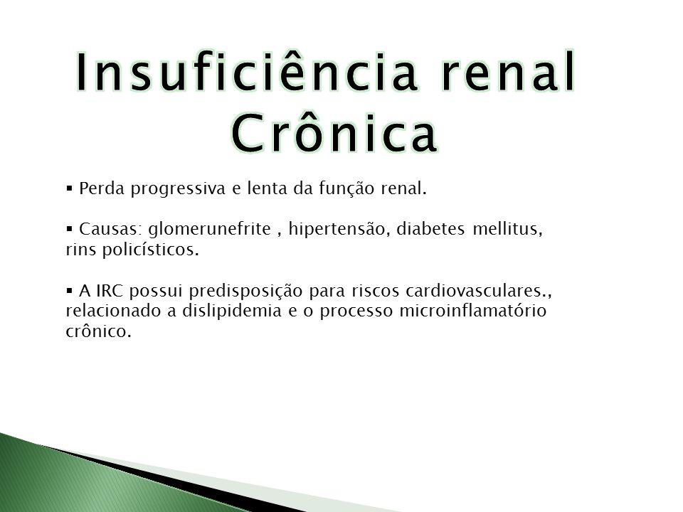  Perda progressiva e lenta da função renal.  Causas: glomerunefrite, hipertensão, diabetes mellitus, rins policísticos.  A IRC possui predisposição