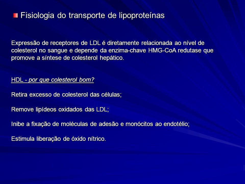 Expressão de receptores de LDL é diretamente relacionada ao nível de colesterol no sangue e depende da enzima-chave HMG-CoA redutase que promove a sín