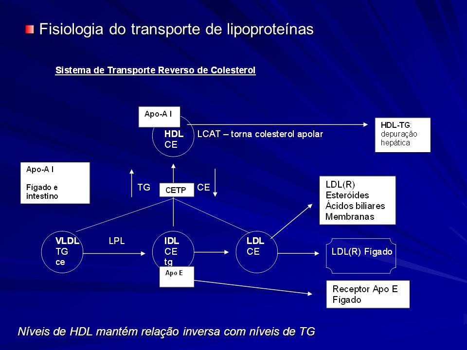 Níveis de HDL mantém relação inversa com níveis de TG