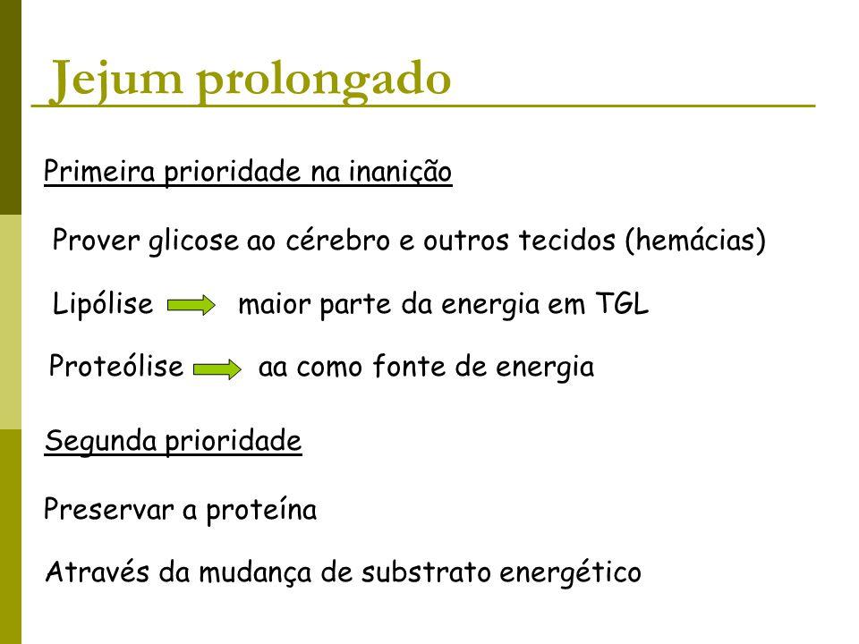 Jejum prolongado Primeira prioridade na inanição Prover glicose ao cérebro e outros tecidos (hemácias) Lipólise maior parte da energia em TGL Proteóli