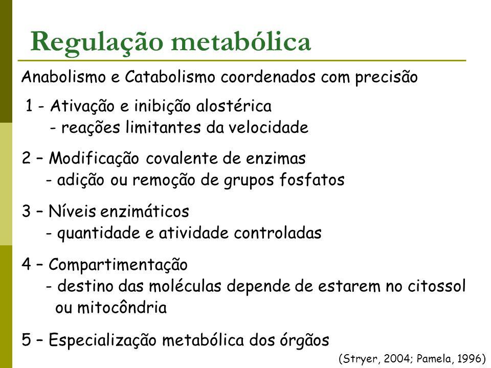Anabolismo e Catabolismo coordenados com precisão (Stryer, 2004; Pamela, 1996) Regulação metabólica 1 - Ativação e inibição alostérica - reações limit