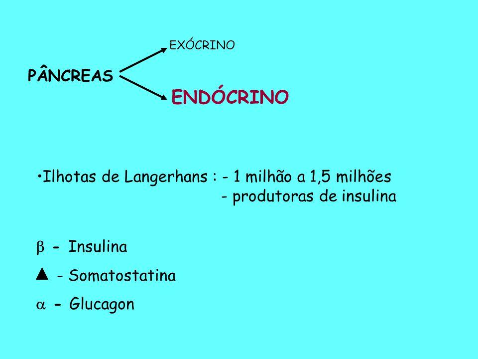 TESTE ORAL DE TOLERÂNCIA À GLICOSE (TOTG) (CURVA GLICÊMICA) A- OBJETIVOS: Raramente é necessário para o diagnóstico do Diabetes mellitus  Indicações:  Diabetes Gestacional  Glicotolerância diminuída  Diabetes Associado ou Secundário  Hipoglicemias  Estudos Epidemiológicos
