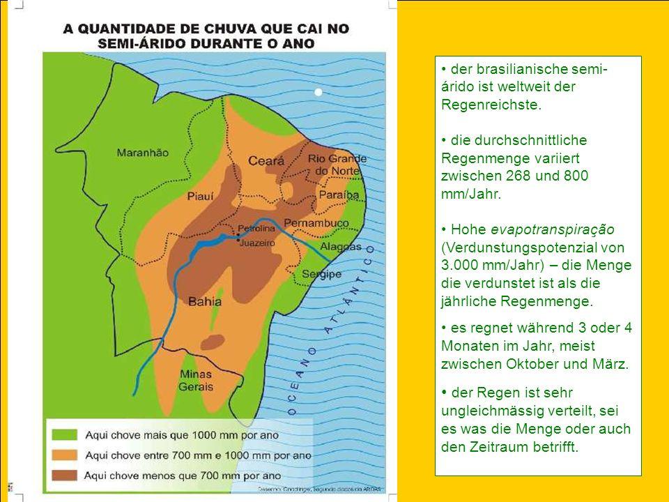 der brasilianische semi- árido ist weltweit der Regenreichste.