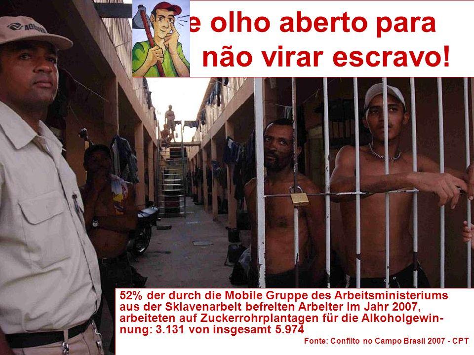 52% der durch die Mobile Gruppe des Arbeitsministeriums aus der Sklavenarbeit befreiten Arbeiter im Jahr 2007, arbeiteten auf Zuckerrohrplantagen für die Alkoholgewin- nung: 3.131 von insgesamt 5.974 Fonte: Conflito no Campo Brasil 2007 - CPT De olho aberto para não virar escravo!