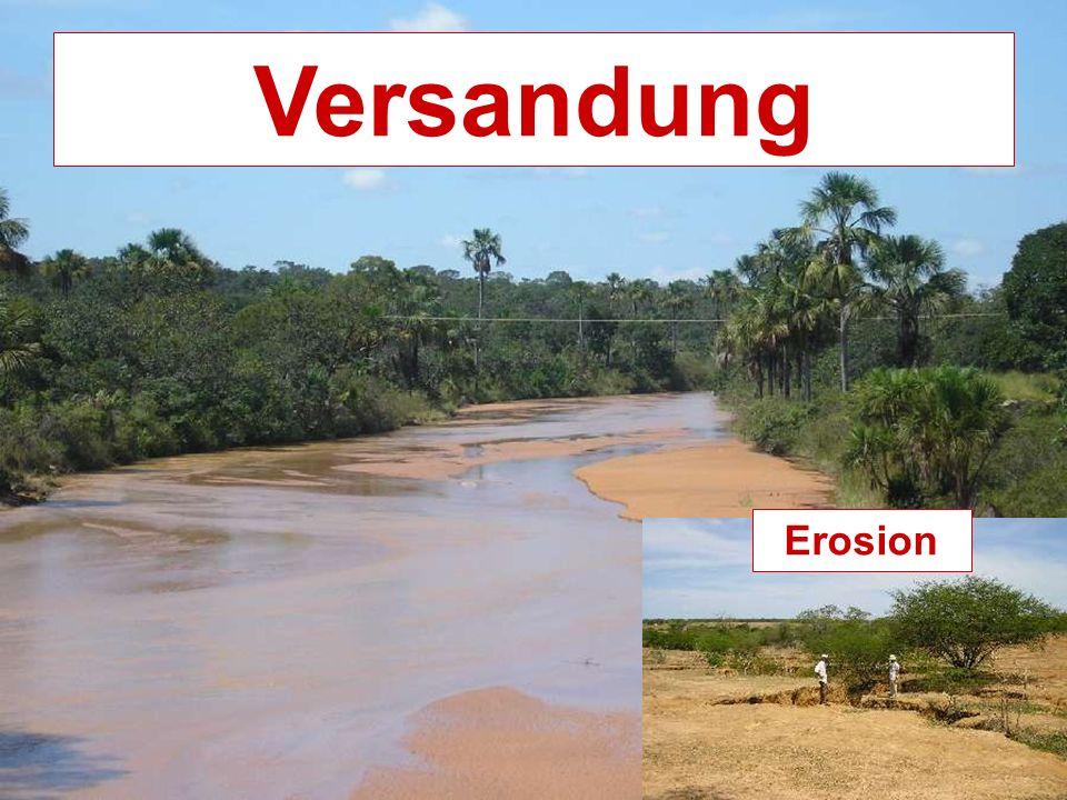 Versandung Erosion