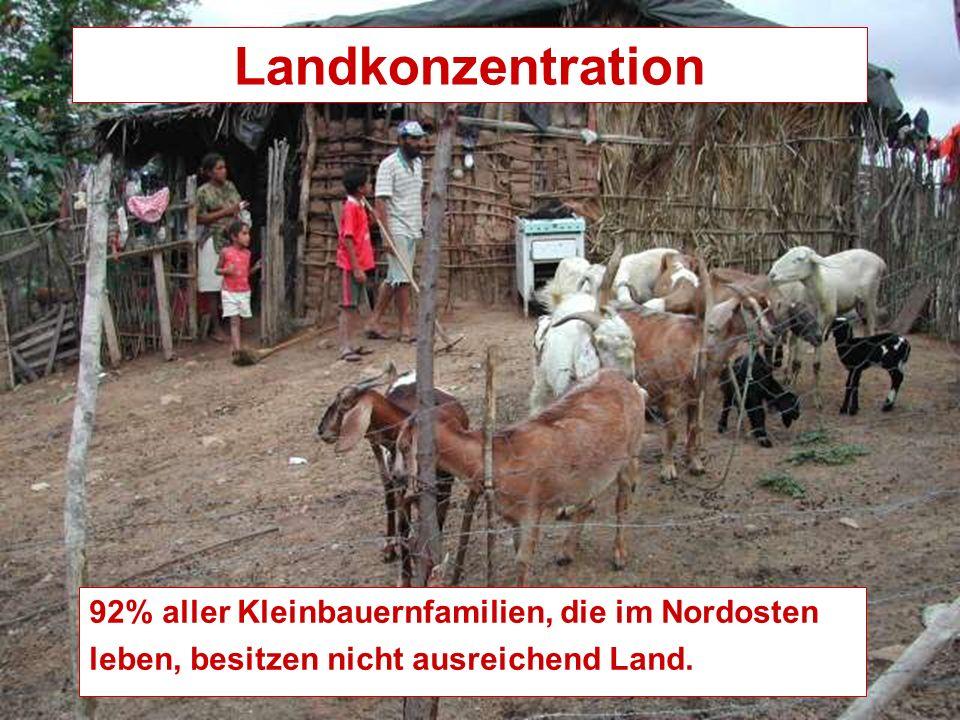 Landkonzentration 92% aller Kleinbauernfamilien, die im Nordosten leben, besitzen nicht ausreichend Land.