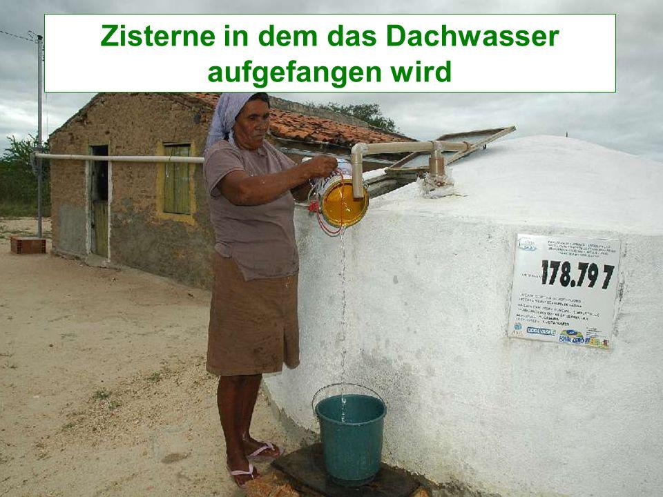 Zisterne in dem das Dachwasser aufgefangen wird
