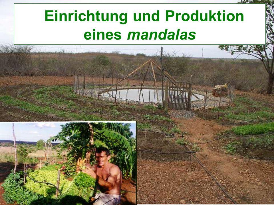 Einrichtung und Produktion eines mandalas