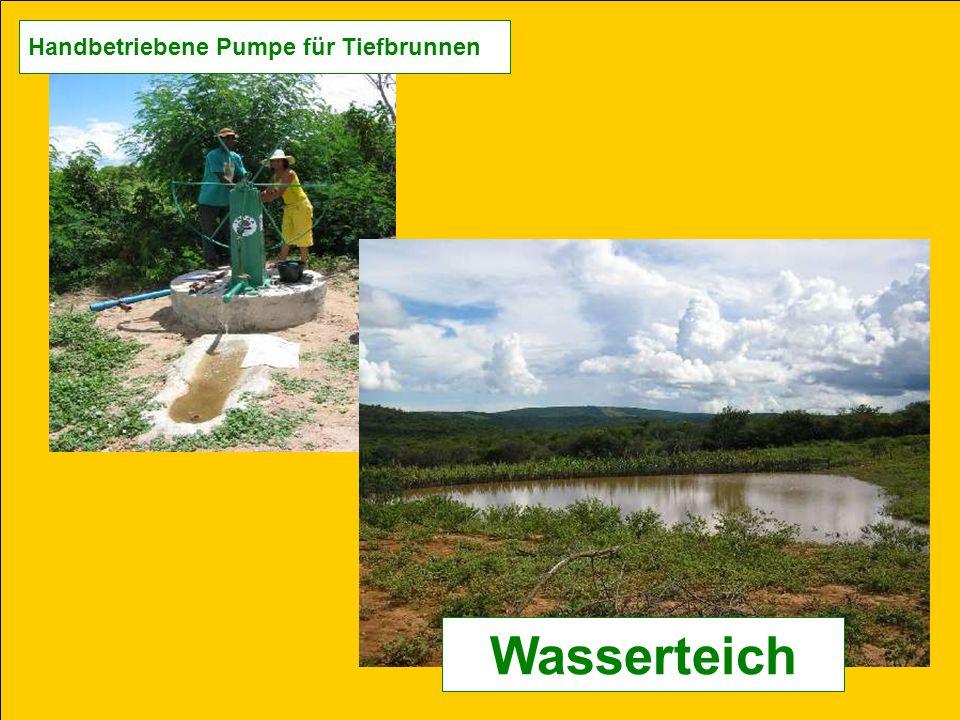 Handbetriebene Pumpe für Tiefbrunnen Wasserteich