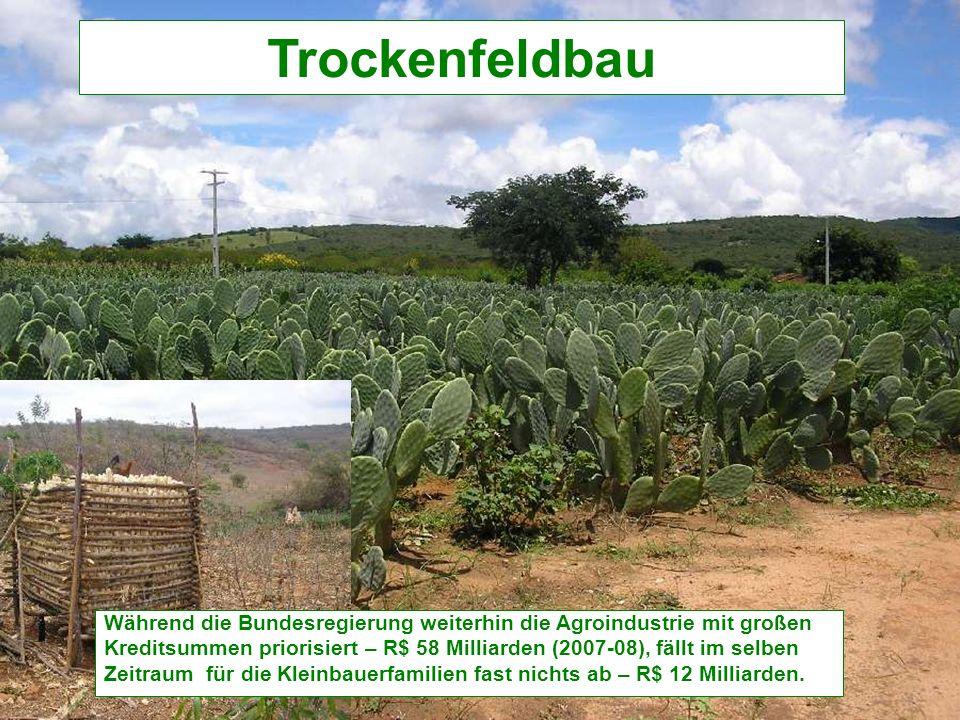 Trockenfeldbau Während die Bundesregierung weiterhin die Agroindustrie mit großen Kreditsummen priorisiert – R$ 58 Milliarden (2007-08), fällt im selben Zeitraum für die Kleinbauerfamilien fast nichts ab – R$ 12 Milliarden.