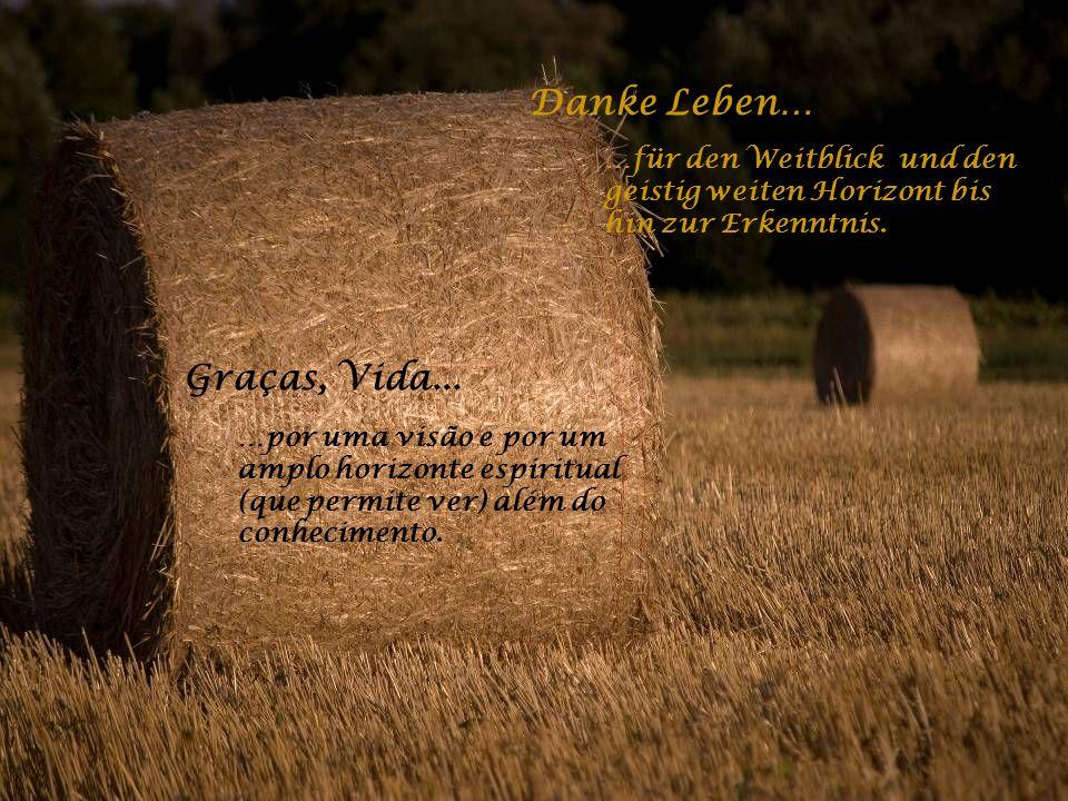 Danke Leben… …für die Liebe im Leben und für den Menschen an meiner Seite. Graças, Vida... …pelo amor na vida e pelas pessoas ao meu lado.