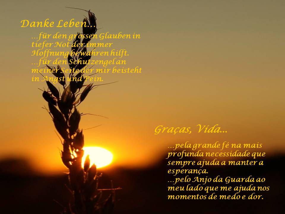 Danke Leben… …für das Lied in meinem Herzen, das Lächeln auf meinen Lippen und die Freude in meinen Händen. Graças, Vida... …pela música no meu coraçã