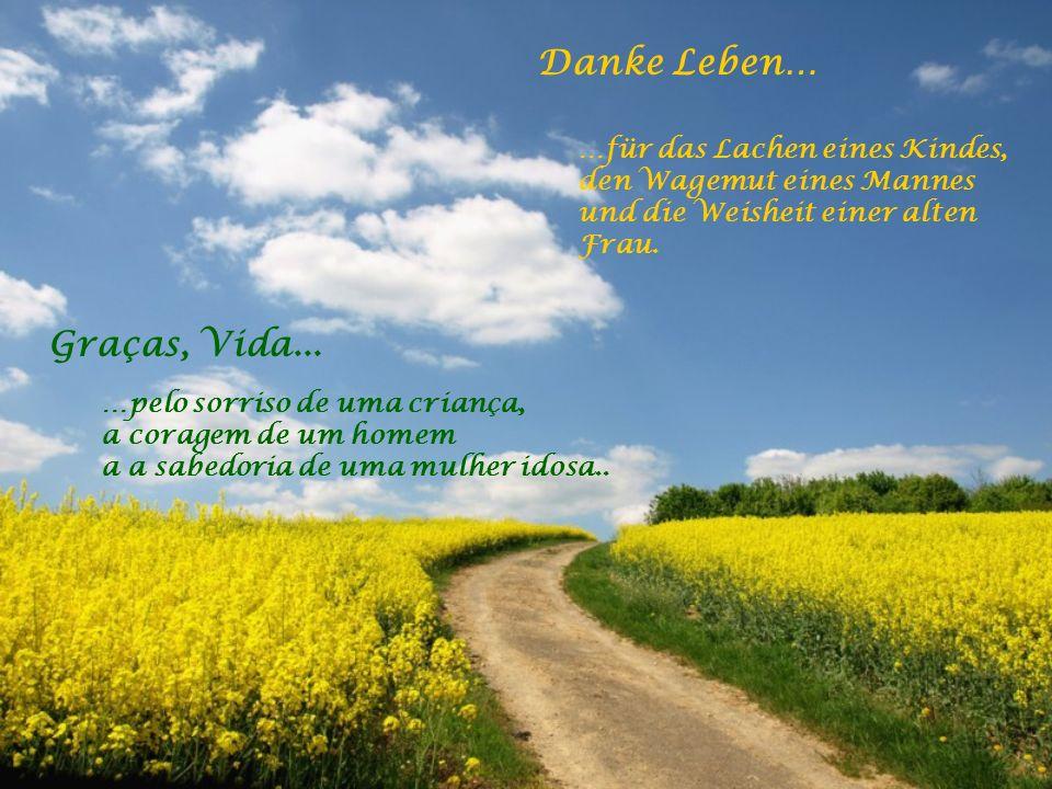 Danke Leben… …dass Du auch nach dem Tod bei mir bleibst und für die Erkenntnis, dass der Tod nur ein Neubeginn ist.
