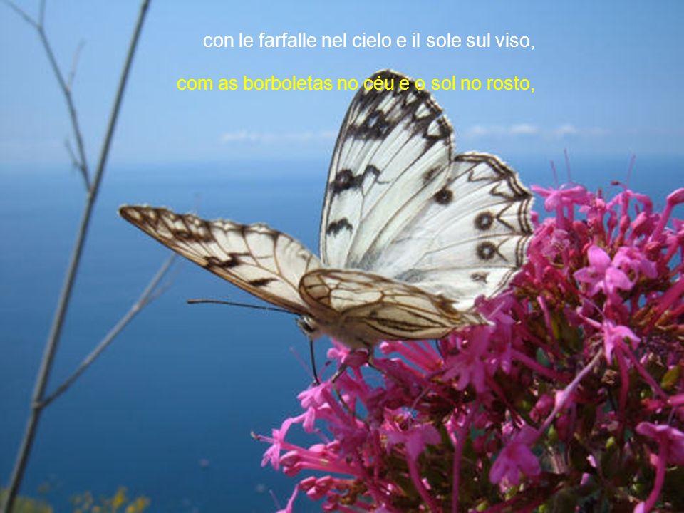 con le farfalle nel cielo e il sole sul viso, com as borboletas no céu e o sol no rosto,