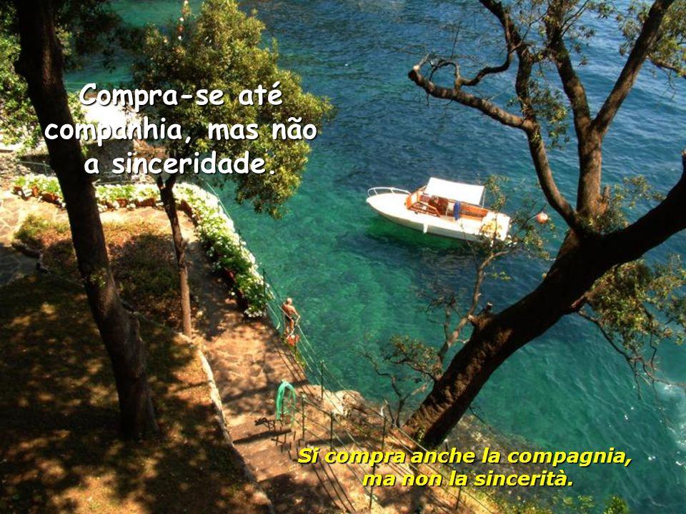 Compra-se até companhia, mas não a sinceridade.Si compra anche la compagnia, ma non la sincerità.