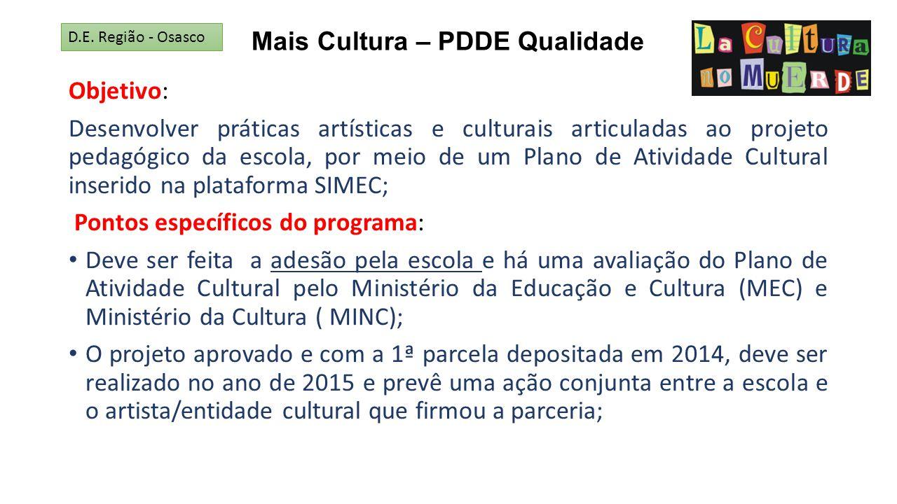 Mais Cultura – PDDE Qualidade Objetivo: Desenvolver práticas artísticas e culturais articuladas ao projeto pedagógico da escola, por meio de um Plano
