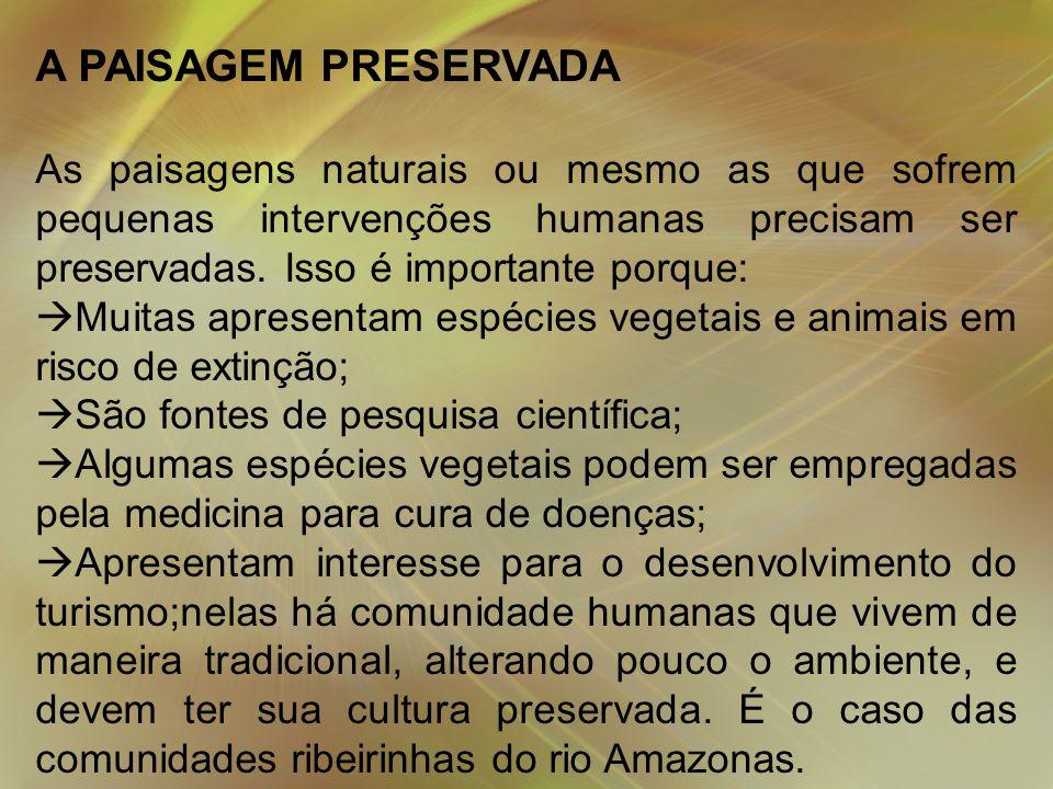 A PAISAGEM PRESERVADA As paisagens naturais ou mesmo as que sofrem pequenas intervenções humanas precisam ser preservadas.
