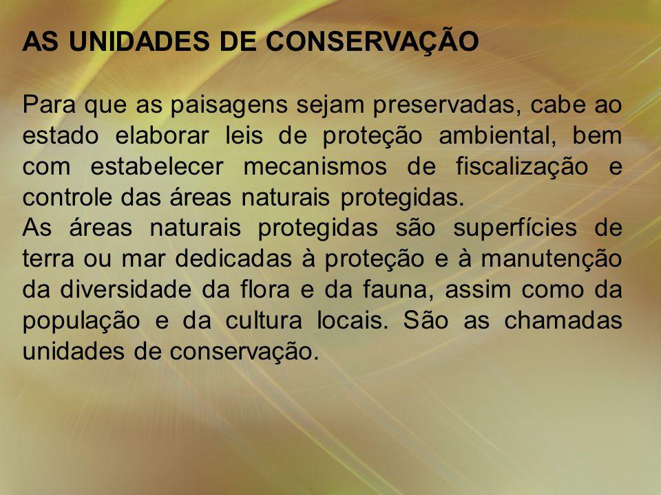 AS UNIDADES DE CONSERVAÇÃO Para que as paisagens sejam preservadas, cabe ao estado elaborar leis de proteção ambiental, bem com estabelecer mecanismos de fiscalização e controle das áreas naturais protegidas.