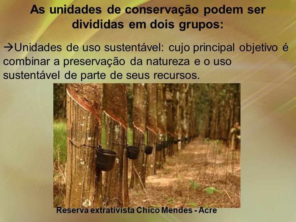 As unidades de conservação podem ser divididas em dois grupos:  Unidades de uso sustentável: cujo principal objetivo é combinar a preservação da natureza e o uso sustentável de parte de seus recursos.