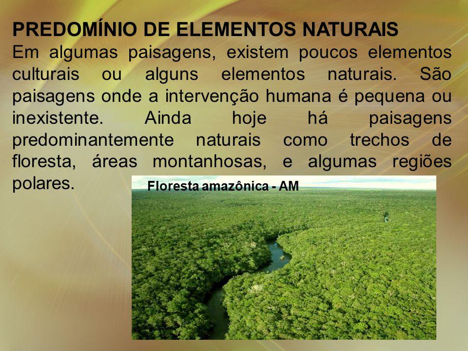 PREDOMÍNIO DE ELEMENTOS NATURAIS Em algumas paisagens, existem poucos elementos culturais ou alguns elementos naturais.